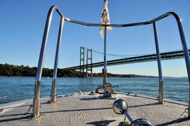 Tacoma Narrows Bridge
