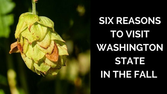 Six Reasons to Visit Washington State in fall.
