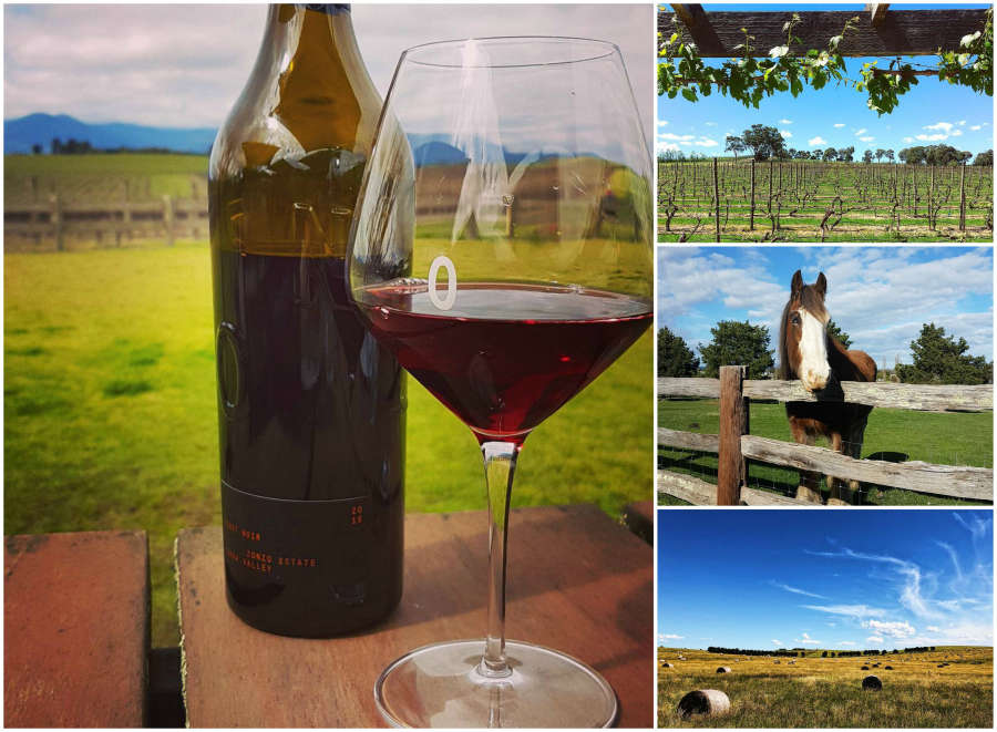 Australian wineries in Yarra Glen.