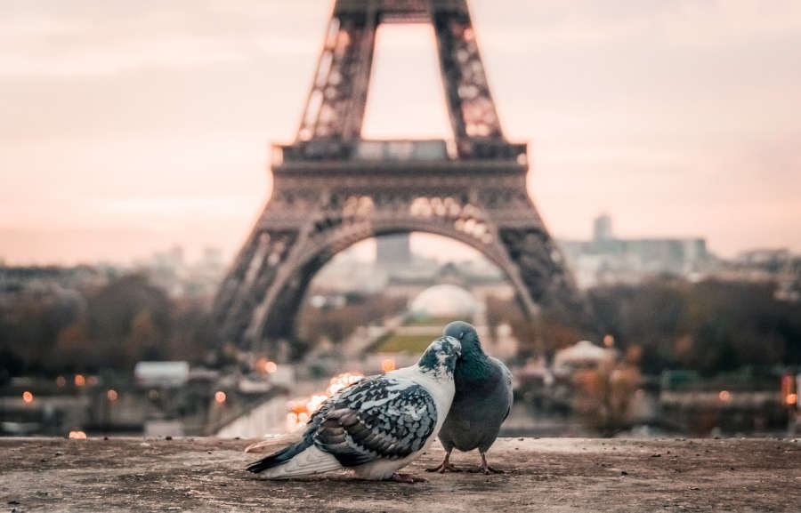 Romantic weekend in Paris, France.