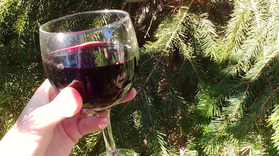 Cabernet sauvignon from Wine Trees.