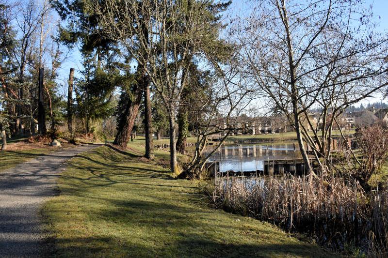 The trails at Medina Park in Medina, Washington.