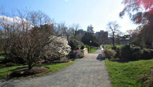 Halifax Public Gardens in May bridge and path