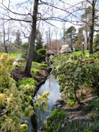 Halifax Public Gardens in May stream