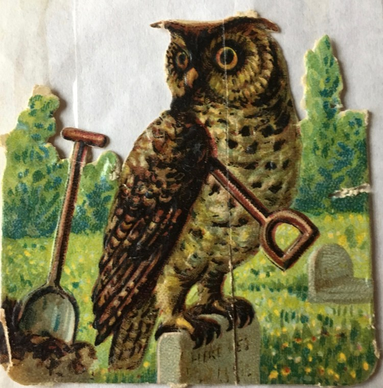 scrap of owl sitting on gravestone with shovel underneath its wing