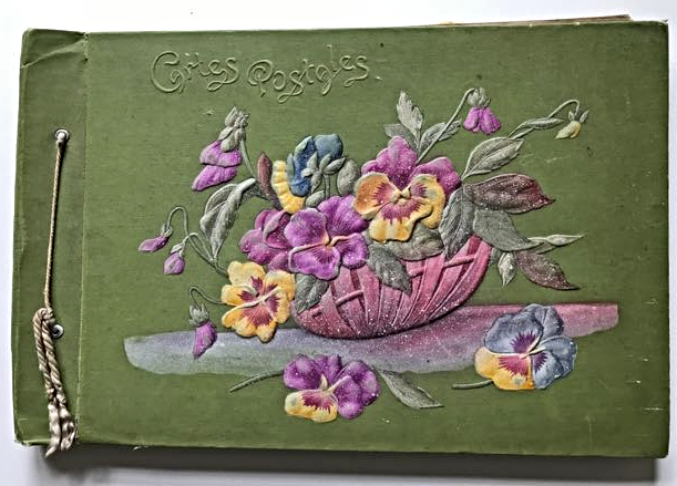 "cover of French postcard album - early 20th century. Basket of pansies on green background and text"" Cartes postales' in upper left hand corner"