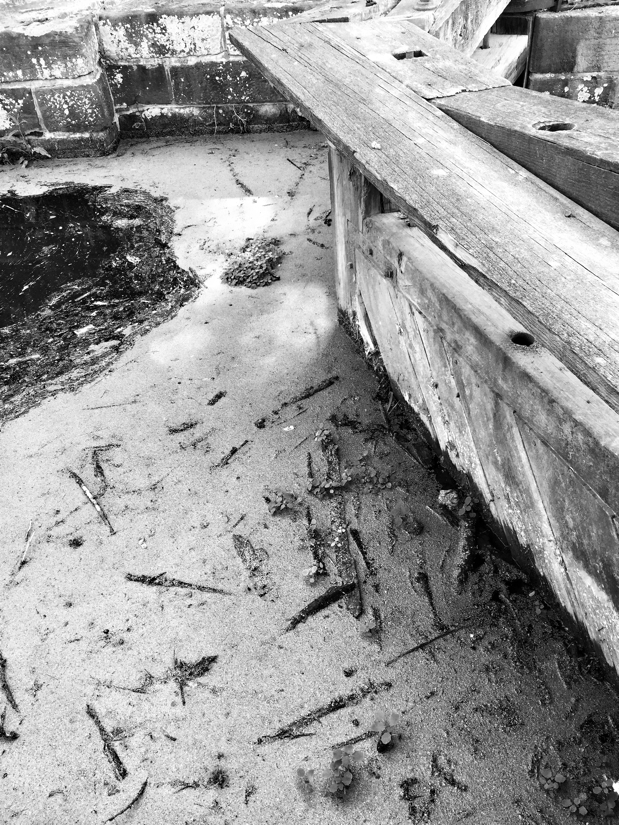 Stagnant water behind a lock gate on the C & O Canal in Potomac, Maryland