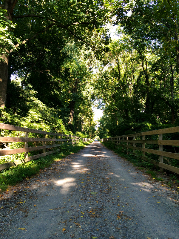 Walking home along the Capital Crescent Trail in Silver Spring, Maryland