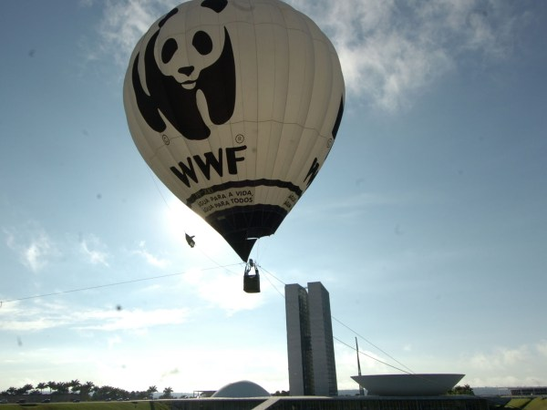 Small-World-Tv-wwf