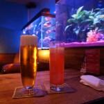 【先斗町】「Barfish」デートにおすすめ!アクアリウムで熱帯魚に癒される