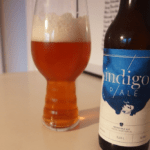 indigo-2