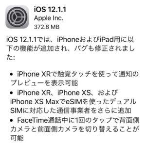 IMG 6549 e1544036620920 300x295 - iOS12.1.1にアップデートしてLTE接続に不具合があるユーザーがいるようです。
