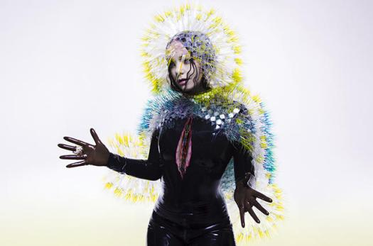 bjork-vulnicura-2015-press-billboard-650