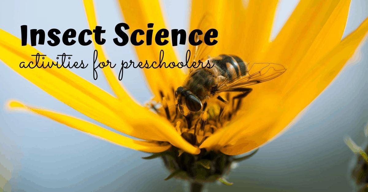 Preschool Worksheets Science 3