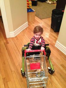 This is how we thought Aleck would use the shopping cart.