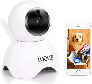 The Best Pet-Friendly Home Security Systems, Best Smart Locks For Home Security