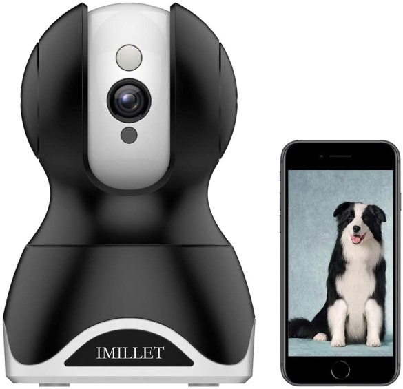 The Best Pet-Friendly Home Security Systems