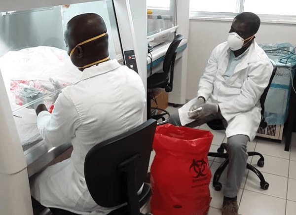 """COVID-19: Univ of Ghana scientists obtain """"critical information"""" to track virus"""