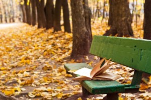 old book on the bench in autumn park