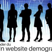 LinkedIn website demographics