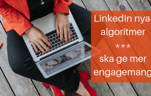 LinkedIn algoritmer