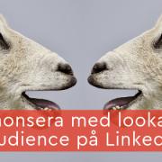 annonsera lookalike audience linkedin