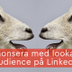 annonsera lookalike audience linkedin