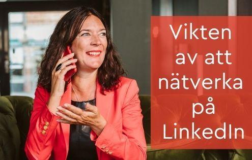 nätverka LinkedIn