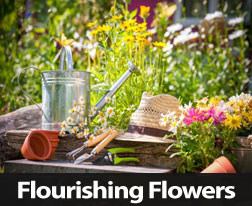 Simple Tips To Help Your Flowers Flourish This Spring