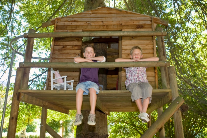 How to Build the Ultimate Tree House for Your Children in Just Seven Steps