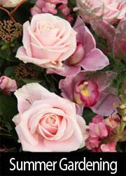 Summer Gardening Tips For June