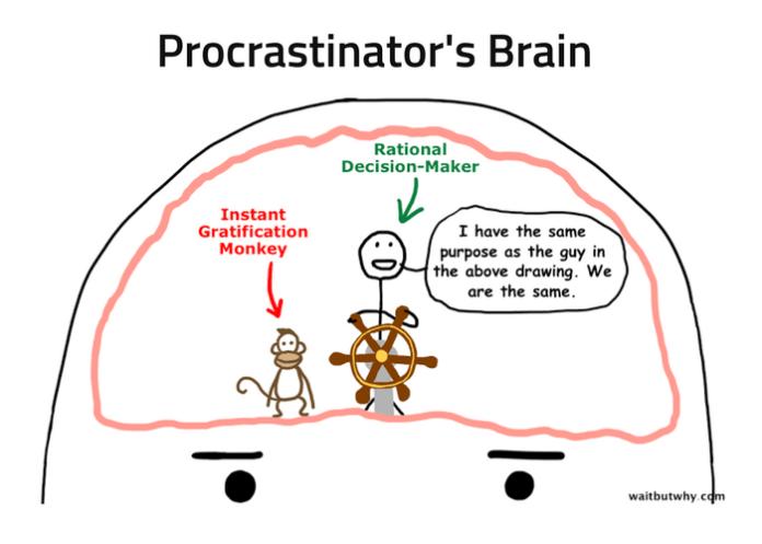Procrastinator's Brain line drawing