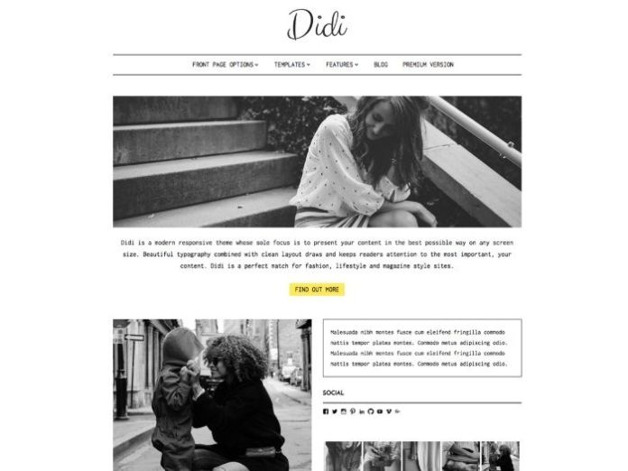 free wordpress themes didi lite
