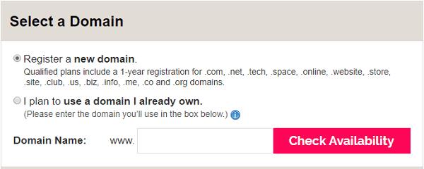 iPage Free Domain Name