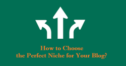 Choose the Perfect Niche for Your Blog