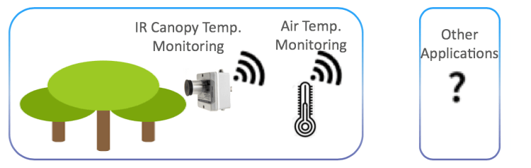 IoT solution for Indoor Plant Water Stress Monitoring on LoRaWAN