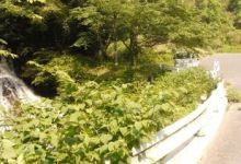 福富 塩滝