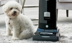 vacuum for professional carpet cleaning services