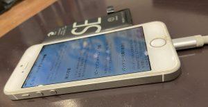 iPhoneSE(第一世代)