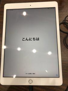 iPadリンゴループ