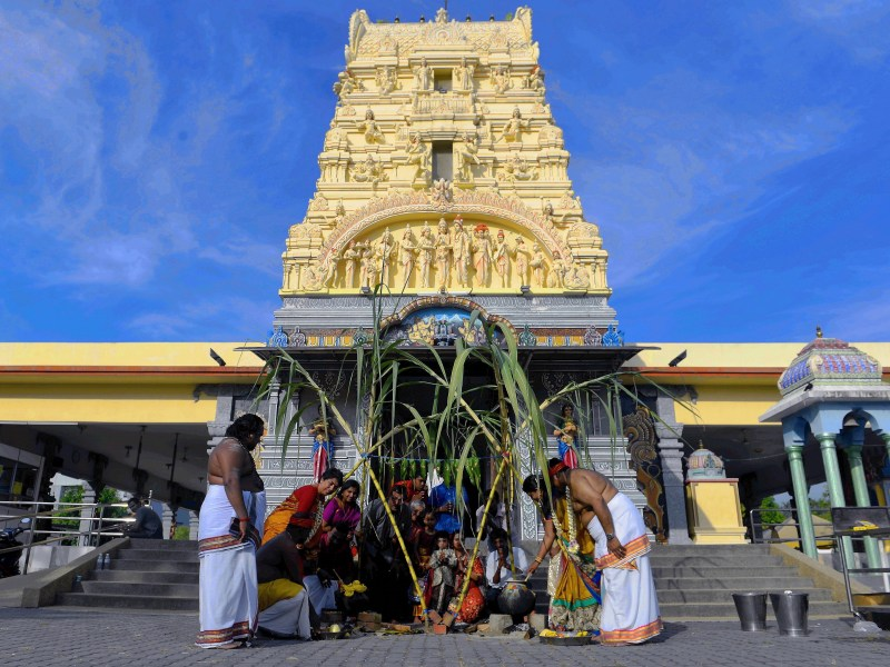 Penang Hindus Celebrate Thanksgiving During Pongal Festival