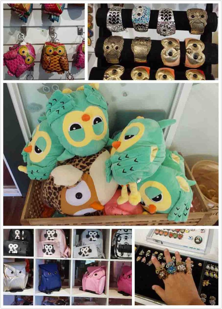 Penang Owl Museum Bukit Bendera Free Entry For Kids