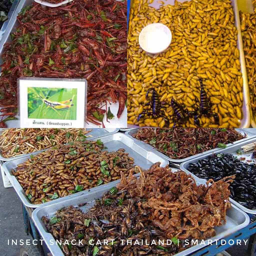 What's The Tastiest Insect Cart Bug Snack In Thailand?