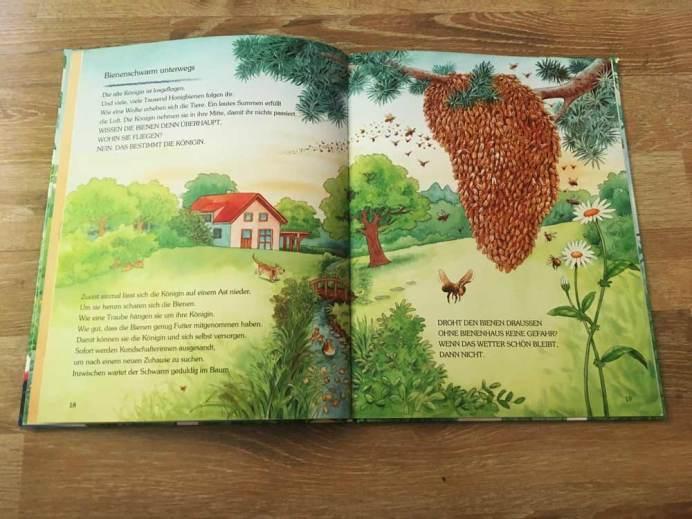 Einblick in das Buch Wie lebt die kleine Honigbiene
