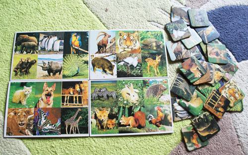Zoo Lotto von Schmidtspiele