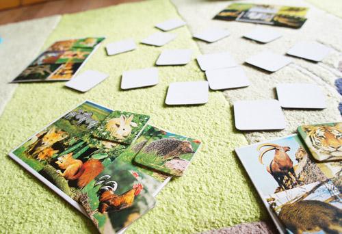 Zoo Lotto von Schmidt Spiele
