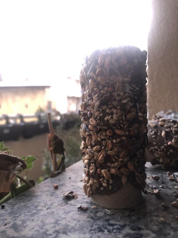 kostenlose Spielideen Vogelfutterrollen basteln