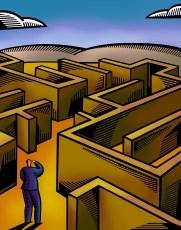Grant Professional Maze
