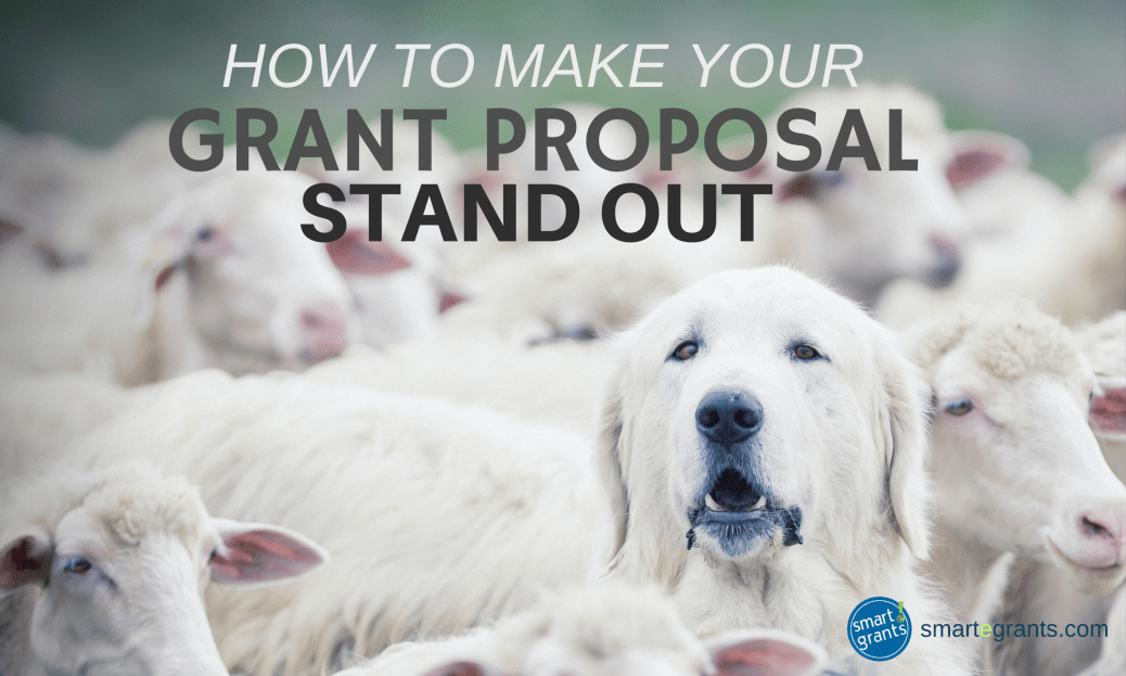 How to make your grant proposal stand out