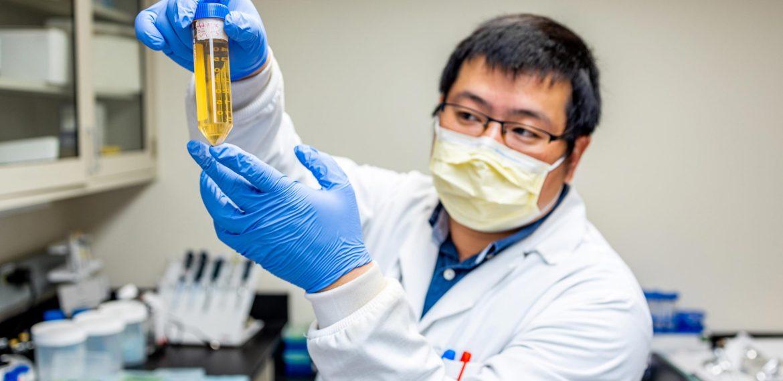 Num possível avanço importante, os pesquisadores desenvolvem um medicamento que neutraliza completamente o COVID